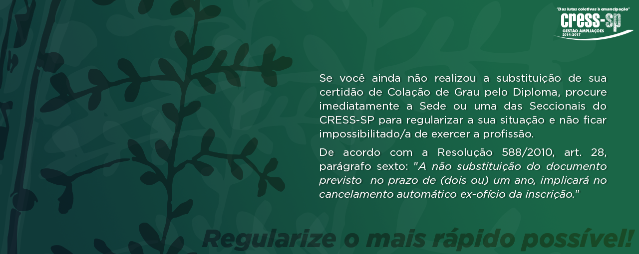 bs_regularize-diploma